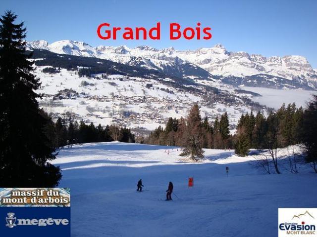 Grand bois; Megève Mont d'arbois Grand-bois-960477