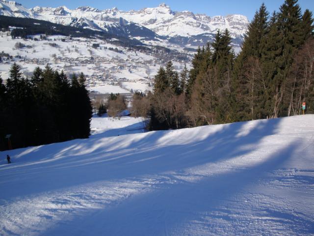 Grand bois; Megève Mont d'arbois Dsc00572-960758