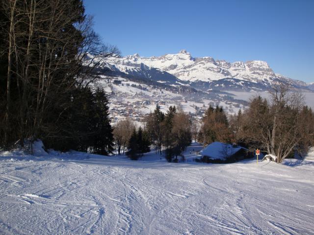 Grand bois; Megève Mont d'arbois Dsc00576-9607fd