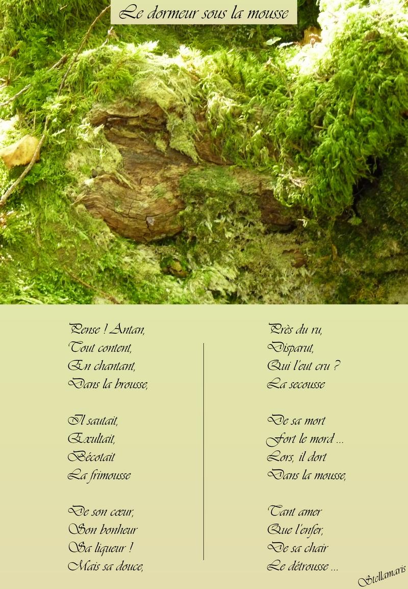 http://img26.xooimage.com/files/4/d/0/le-dormeur-sous-la-mousse-1f96770.jpg