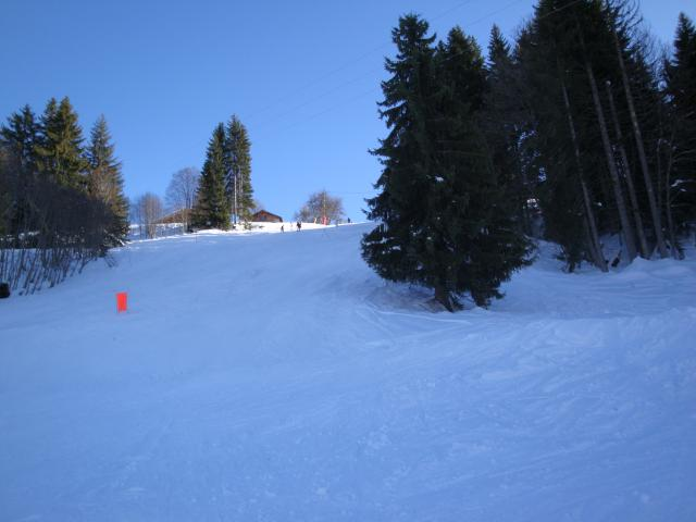 Grand bois; Megève Mont d'arbois Dsc00570-960714