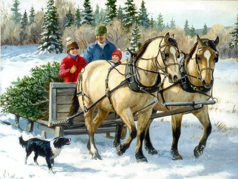 enfant-chevaux-chien-neige-paysage-flora