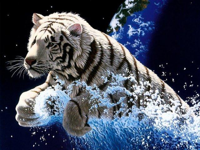 beau-tigre-flora